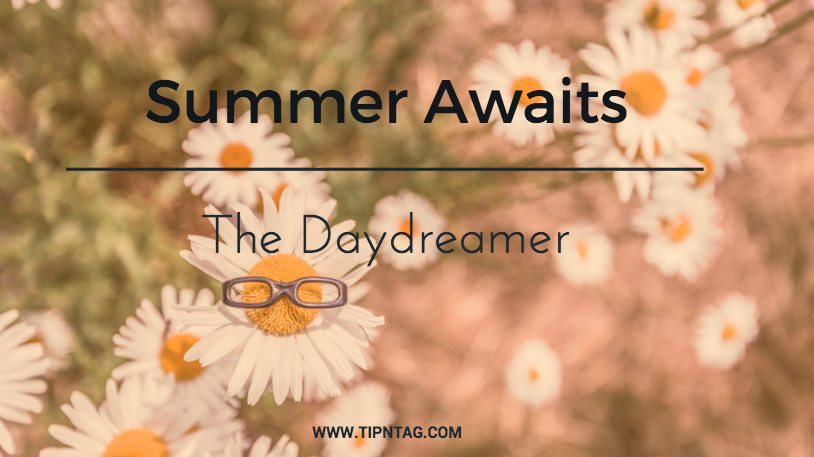 Blog Summer Awaits