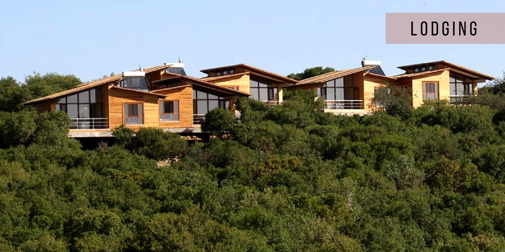 Ajloun Forest Reserve Cabins