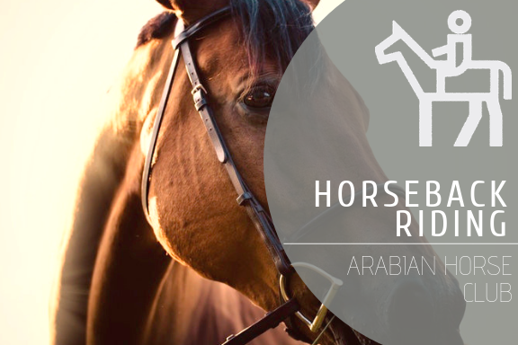 Horseback Riding @ Arabian Horse Club
