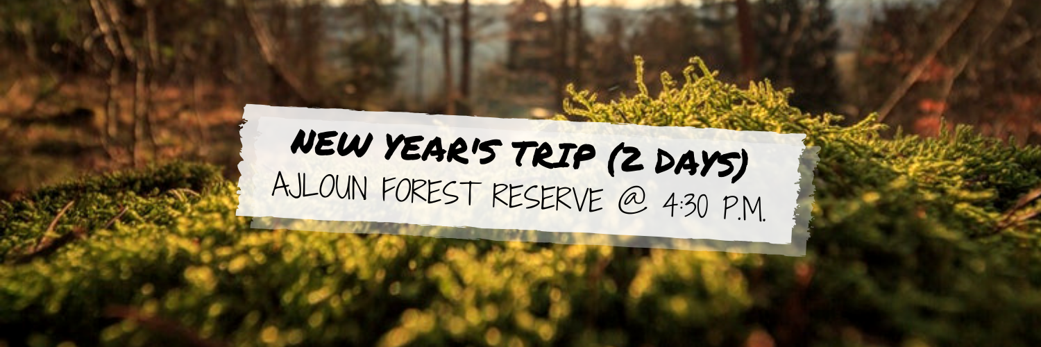 New Year's Trip (Two Days) @ Ajloun Forest Reserve